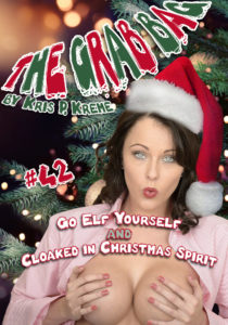 The Grab Bag #42 - Go Elf Yourself & Cloaked in Christmas Spirit by Kris P. Kreme